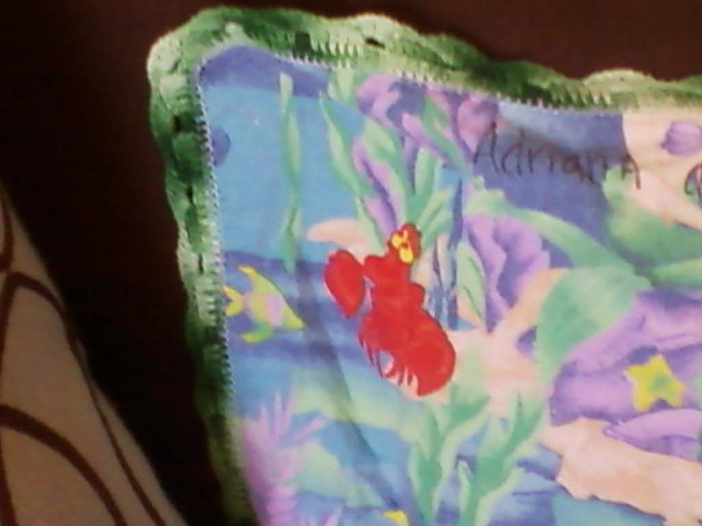 Detalles del borde tejido de la frisita de Adriana.